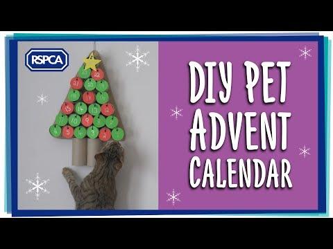 Pet Advent Calendar And Puzzle Feeder