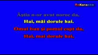 MIRCEA RUSU-Omul bun si pomul copt Karaoke Profesional