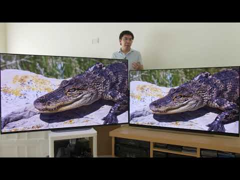 LG E9 vs Sony AG9 (A9G) 2019 OLED TV Comparison
