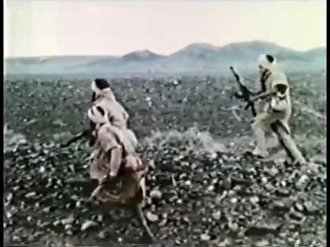 Western Sahara combat footage