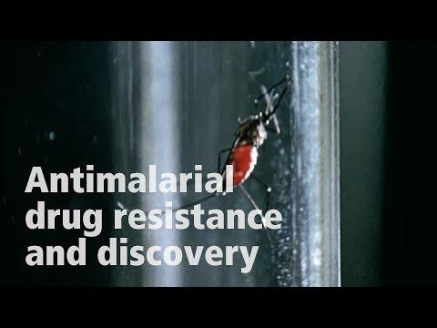 David Fidock on antimalarial drug resistance