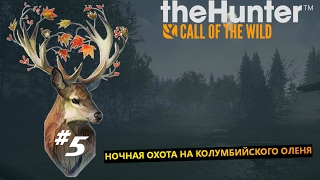 theHunter Call of the Wild  #5 Ночная охота на Колумбийского оленя