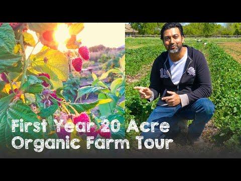 First Year 20 Acre Organic Farm Tour