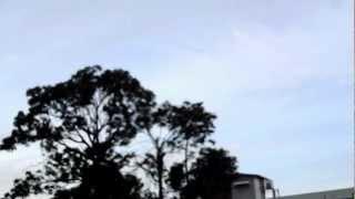 Panorama burung walet di al mashoor di setiap pagi
