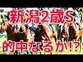 【2017年競馬】新潟2歳Sに先週の払戻し金をぶっこんだ結果…!!
