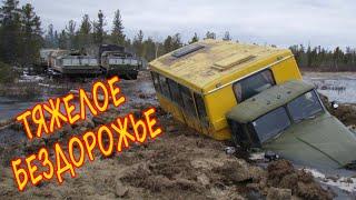 Наши грузовики и иномарки на зимнике и бездорожье. Работа в сложных условиях.