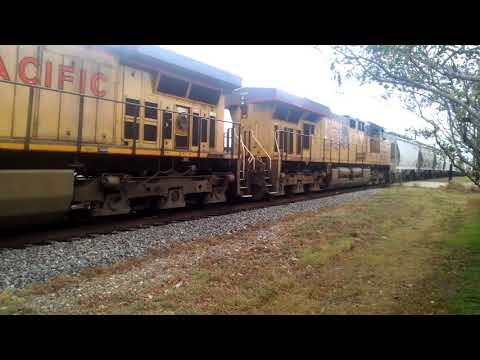 UNION PACIFIC BAY COVER HOPPERS. 10-3-2017 ATHENS TEXAS.