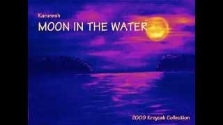 Karunesh   MOON IN THE WATER