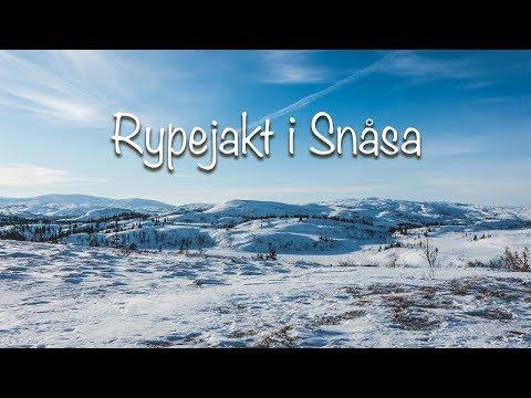 Vinterjakt i Snåsa - Rypejakt