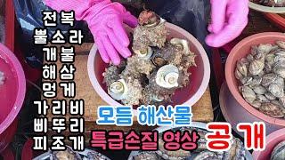 달인의 8가지 모듬해산물 특급 손질영상!!