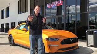 Why would you even buy a 2018 Mustang GT? Ultimate Pony Car - Raiti's Rides