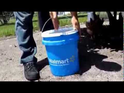 Homemade 5 Gallon Bucket Waterer For Chickens Youtube