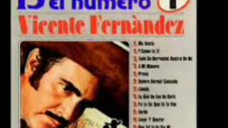 VICENTE FERNANDEZ MIX