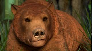 Ryan Sequeira - Creature Animation Workshop (Bear)