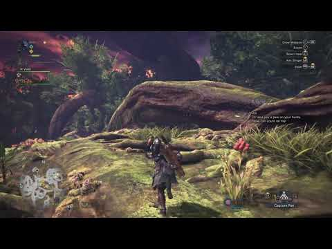 Exploring the Ancient Forest - Monster Hunter World