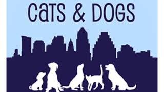 austin cats & dogs rescue