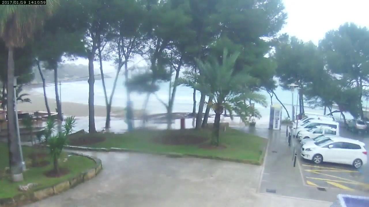 Paguera Livecam