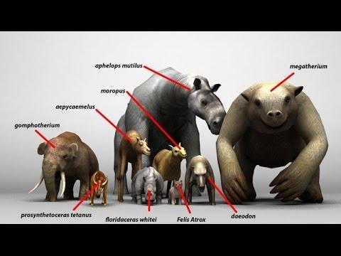 Top 30 Prehistoric Beasts & Dinosaurs
