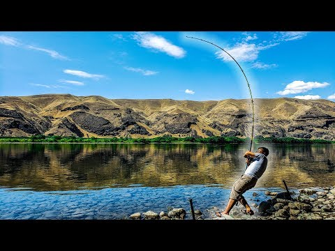 Bank Fishing For River Monsters | Columbia River, Washington