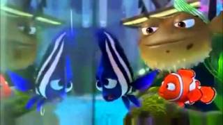 The blue fish from finding nemo as a description of person