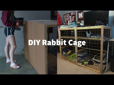 Building DIY Rabbit Cage for $20