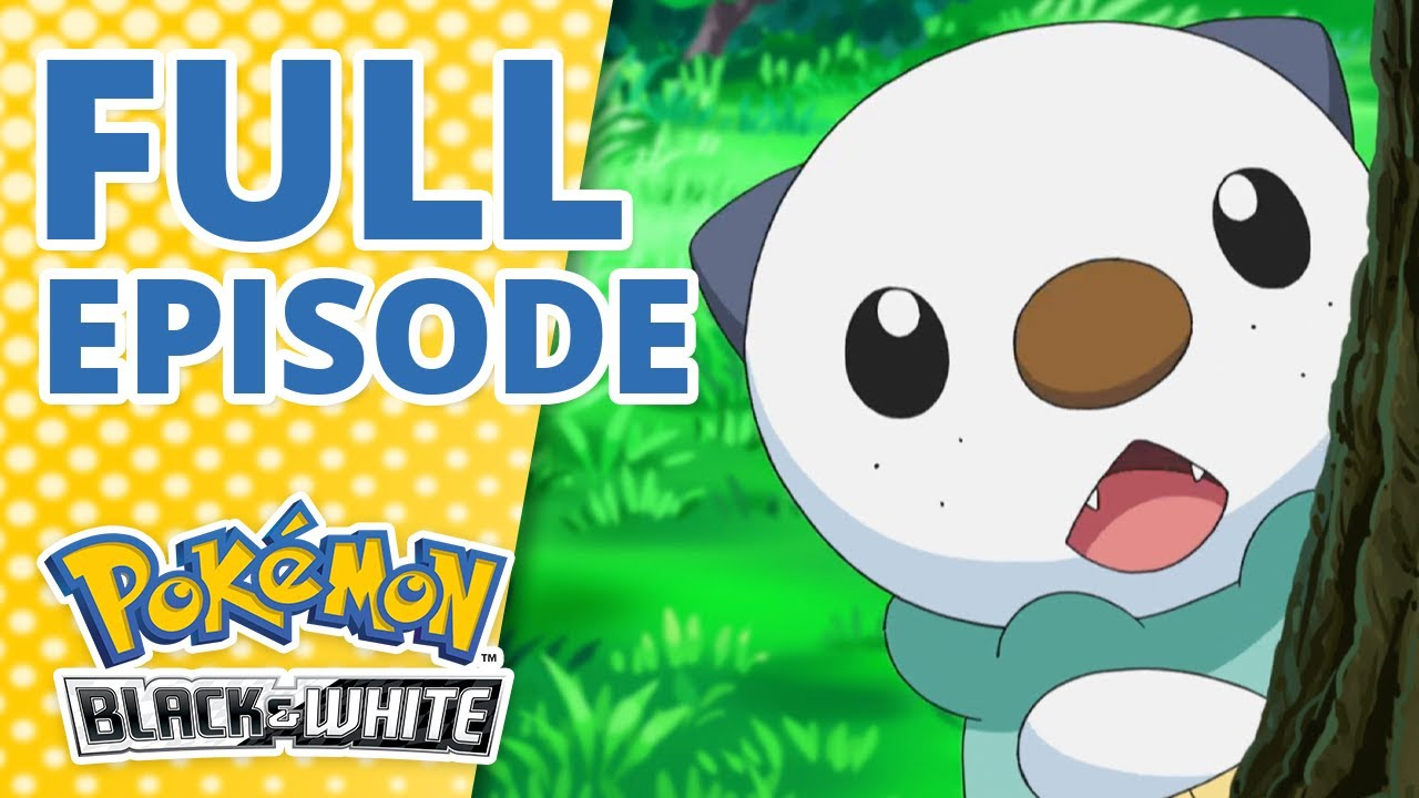 Download In the Shadow of Zekrom!   Pokémon: Black & White Episode 1