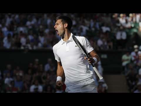 Wimbledon 2017: Djokovic, Federer, Radwanska and Wozniacki all win on day six