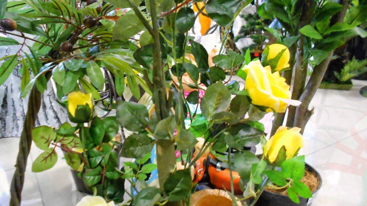 Компания «крупномеры урала» занимается поставкой и посадкой саженцев деревьев крупномеров в екатеринбурге. Купить саженцы деревьев можно, оставив заявку на сайте или позвонив по ☎ 8 800 300 5580.