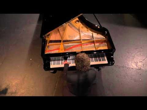 REPORTAGE. POLONIA, Polonaises de Chopin : Le nouvel album de Pascal Amoyel
