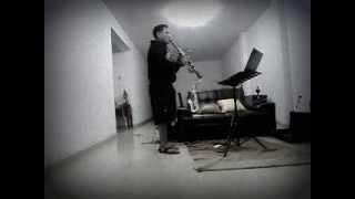ensayando con clarinete  havana de kenny g