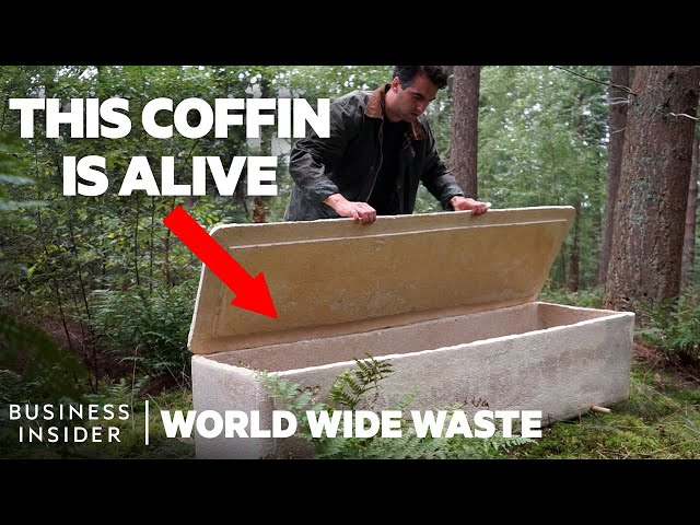 Mushroom Coffins Turn Bodies Into Compost And Make Death Less Toxic | World Wide Waste