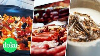 Vegan, Fleisch oder Insekten - Was ist am besten? | WDR Doku