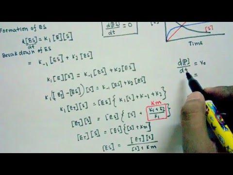 Download Michaelis Menten equation derivation