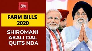 Shiromani Akali Dal Quits NDA Over Farm Bills | Breaking News | India Today