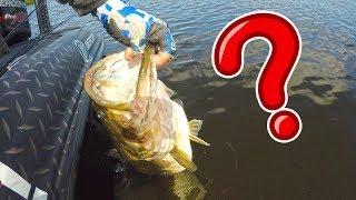 WE Met a CELEBRITY BASS FISHING?!?!  MY 2019 PB!!!!