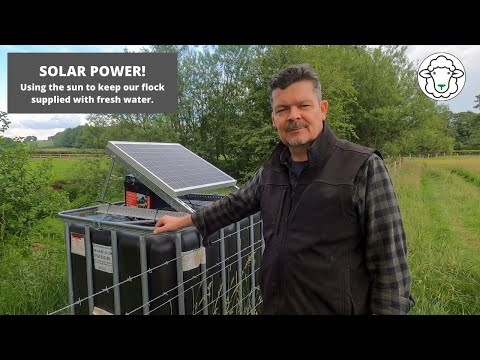 SOLAR POWER - using the sun to supply water to our flock!
