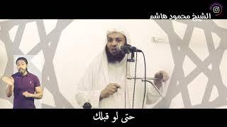 الشيخ محمود هاشم -  انا فاهمها كويس .. مش هايحصل إني أسلم نفسي وامشي معاك