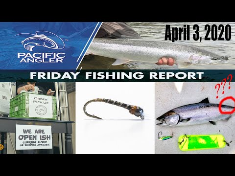 Pacific Angler Vancouver Fishing Report - April 3rd, 2020