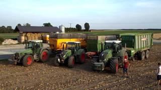 kiszonka z kukurydzy 2016 w rozmierzy fendt 412 514 scr 714 716 2x824 claas jaguar 930