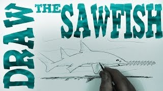 How to Draw the Sawfish (Beginner)- Spoken Tutorial