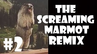 The Screaming Marmot - Remix Compilation #2