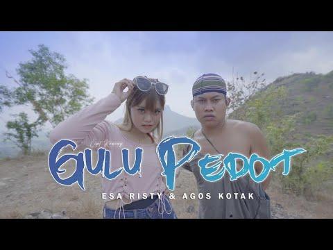 Esa Risty feat. Agos Kotak - Gulu Pedot (Official Music Video) DJ TikTok | Mletree Asekk Bosquee