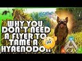 How To Tame A Hyaenodon Without A Flyer(EASY!)- Ark Survival Evolved Xbox One- Kamz25