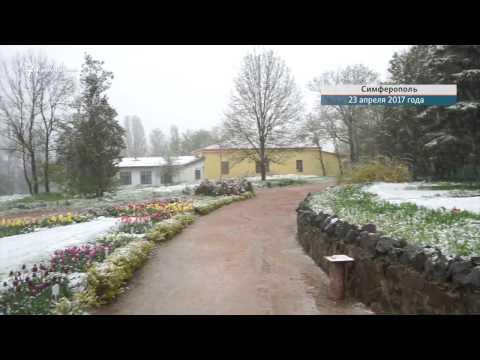 Симферополь засыпало апрельским снегом
