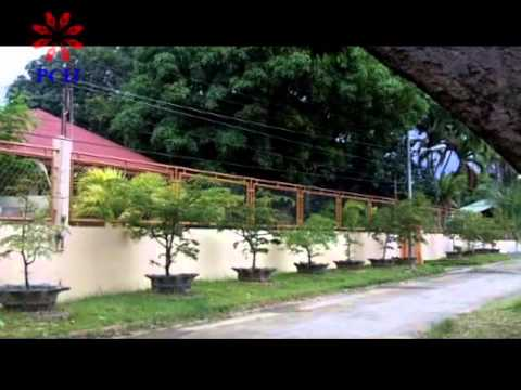 The Ampatuan Assets - A PCIJ documentary on the wealth of the Ampatuan clan