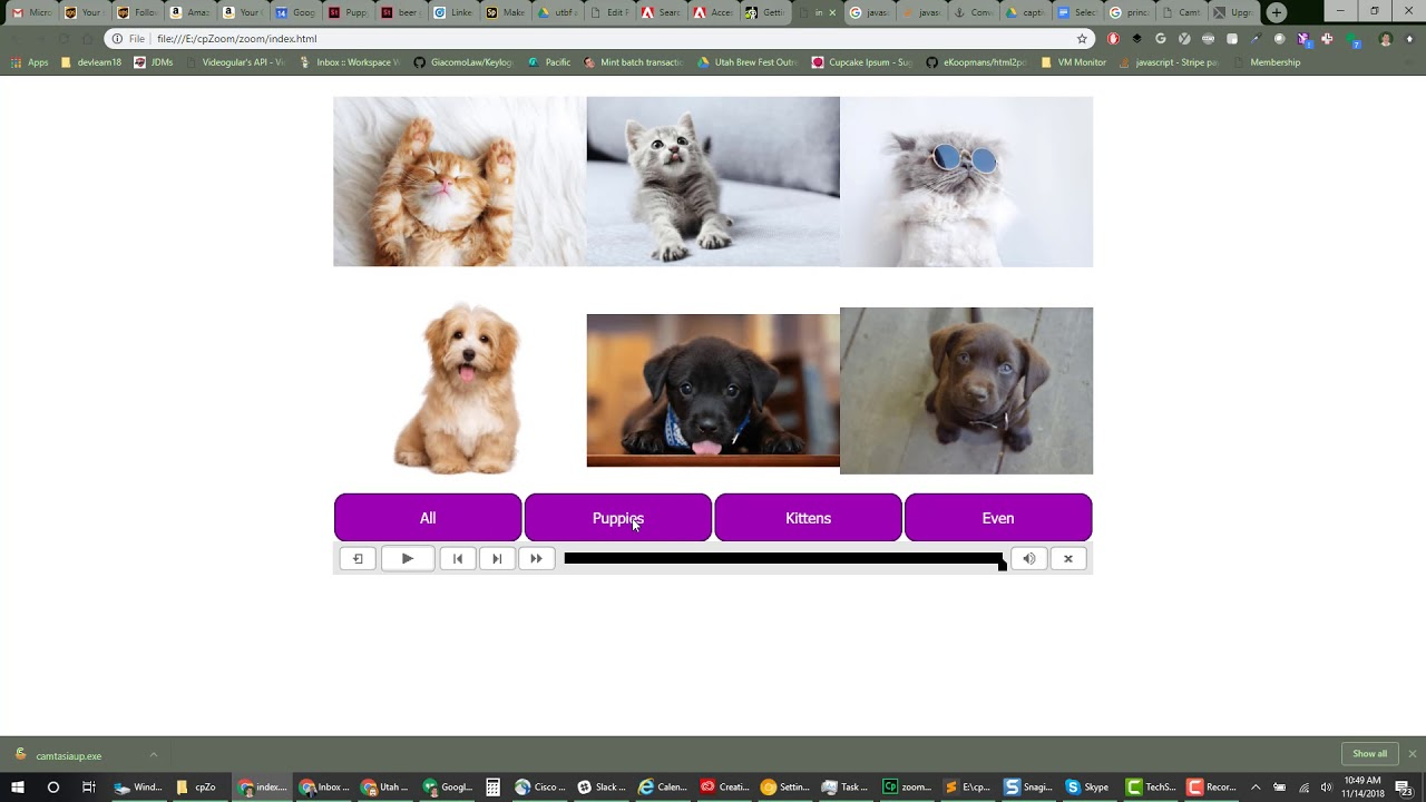 Ta Da! Select and Zoom Images in Captivate with JavaScript