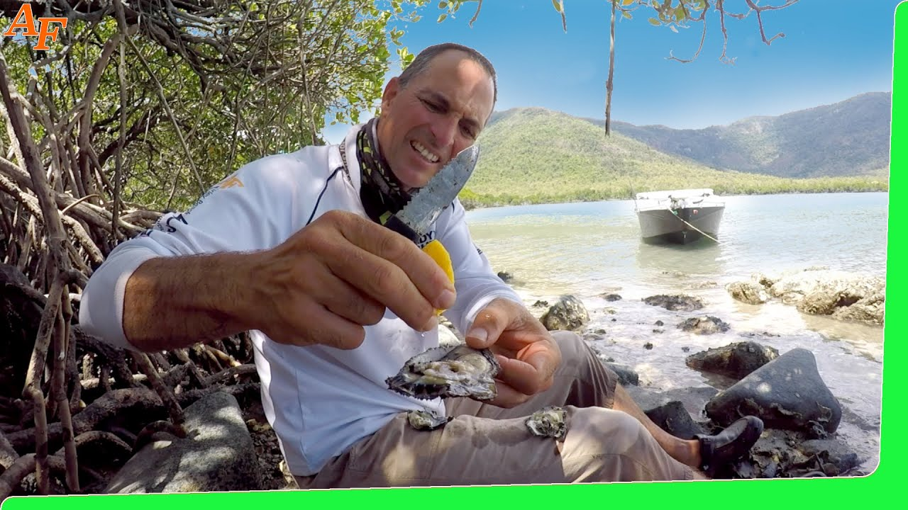 Solo Beach Camping - Catch and Cook - Trophy Fish EP.500