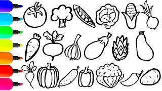 Coloring 20 vegetables | Painting for toddlers and drawing for kids | Learn 20 vegetables