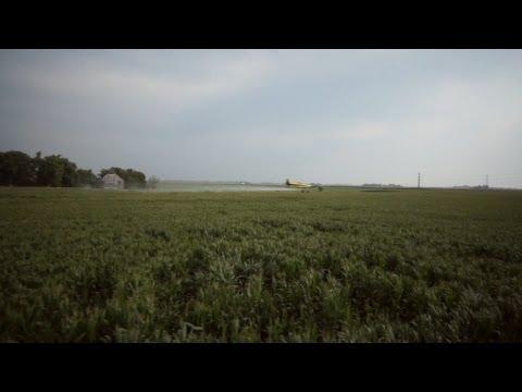 TCA & Kubal's Aerial Spraying 2013
