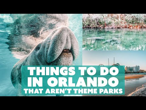 THINGS TO DO IN ORLANDO That AREN'T Theme Parks